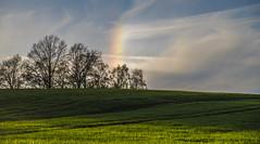 Halo (matthias_oberlausitz) Tags: abend sonnenuntergang feld wiese himmel halo regenbogen erscheinung getreide grnland