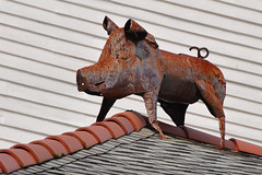 New Orleans - Rusted Piggy (Drriss & Marrionn) Tags: street usa house building art architecture buildings pig artwork iron outdoor balcony balconies gardendistrict streetviews neworleansla housestyle rustypig neworleanscitytrip