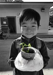 Planting Seeds, Growing Roots. #116/366 (acyee) Tags: plant garden grow samsung seeds galaxy 365 kindergarten homework planting s6 366 acyee kaiduncanyee 3662016