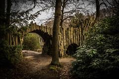 Bridge in the enchanted forest (Goddl) Tags: bridge forest landscape outdoor brcke landschaft bume mystic mystisch