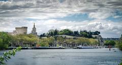 Avignon (Rmi Avignon) Tags: provence avignon vaucluse