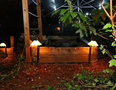 IMG_7776 (jalexartis) Tags: lighting nightphotography sun night dark outdoors aquarium outdoor aquatic basking aquatichabitat ybst yellowbelliedsliderturtles outdoorhabitat