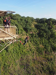 Giorgio Bungy Jumping (little_duckie) Tags: africa zimbabwe bungy bungee zambezi bungyjump zambeziriver 111metres