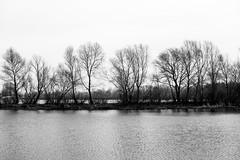 DSC_4803 (kabatskiy) Tags: city urban lake nature landscape spring dump minimal marsh abstracts