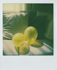party prep (elin*) Tags: party slr home sunshine balloons polaroid sx70 impossiblecolourfilm roidweek2016