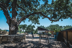 20160423-_DSC8696.jpg (Jorge A. Martinez Photography) Tags: family green fun nikon day wine weekend sunny hills tasting fx pasorobles jada sextant d610 lecuvier sigma24105 turrley
