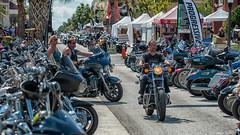 Leesburg Bikefest (mwjw) Tags: florida leesburg bikers bikefest markwalter nikond800 mwjw tamron150600mm
