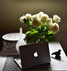 flowers (louis ub'R) Tags: fleurs mac pomme photographe