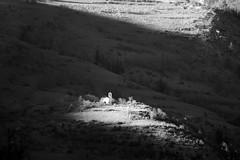 Soubras bw (MILESI FEDERICO) Tags: wild italy panorama detail primavera montagne landscape nikon europa europe italia details piemonte dettagli alpi montagna piedmont paesaggio particolari dettaglio 2016 nital valdisusa oulx alpicozie valledisusa d7100 visitpiedmont altavallesusa altavaldisusa iamnikon valliolimpiche nikond7100 milesifederico federicomilesi