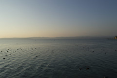 Lago d'inverno (mazzola.michele) Tags: travel winter italy lake garda sirmione