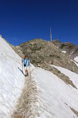Auf dem Lysengrat (uwelino) Tags: travel alps schweiz switzerland europa europe suisse swiss adventure alpen stgallen wandern säntis alpstein 2015 gipfel kanton spectacularlandscape berggipfel berggasthaus swisstravel travelsuisse swisstravelspectacular