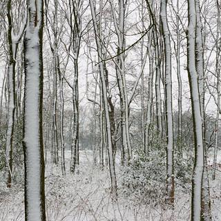 wintertje