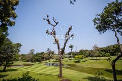 SE_Riodejaneiro0323 (Visit Brasil) Tags: horizontal brasil riodejaneiro natureza ecoturismo gavea externa sudeste semgente diurna gaveagoldandcountryclub