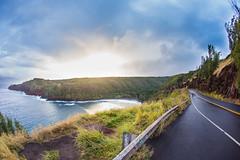 2016.01.06-Maui-013 (c_tom_dobbins) Tags: hawaii maui nakalele