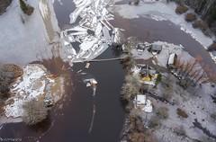 Kayaks on Karuskose (BlizzardFoto) Tags: ice water kayak flood suspensionbridge aerialphotography vesi j icejam soomaa aerofoto leujutus karuskose soomaanationalpark soomaarahvuspark viiesaastaaeg raudnajgi rippsild jminek riverraudna