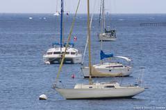 Boats Anchored in Anse Chadiere (DJ Greer) Tags: ocean blue sea water sailboat town village martinique horizon carribean explore anchor sail mast sailboats masts buoy anchored anse chadiere