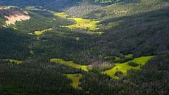 Beef Trail Creek Meadows (Dru!) Tags: canada green bc britishcolumbia meadow bellacoola tweedsmuir chilcotin rainbowrange tweedsmuirprovincialpark anahimlake beeftrail hammerlakesandrainbowrange tsitsutl beeftrailcreek