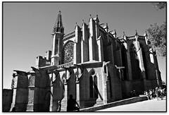 Basilique St.-Nazaire, Carcassonne (Jess Cano Snchez) Tags: bw france byn canon roman gothic frana bn unesco romanesque aude francia middleages carcassonne carcassona romanic gotique eos20d romanico gotico languedocroussillon gotic carcasona tamron18200 elsenyordelsbertins quelestcelieu lengadocrosselhon
