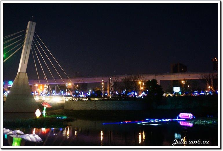 台灣燈會 (27)