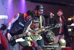 Flako Txarrena, Txus Marav y El Drogas (juan antonio gamez) Tags: bajo guitarra heavymetal slayer hardrock gretsch batera barricada polygram rockalternativo rockradicalvasco lavenganzadelaabuela eldrogas txarrena rockurbano bmgariola soua brgidoduque eugenioaristu brigiduke txusmarav malditorecords droeastwest enriquevillarrealarmendriz flakotxarrena