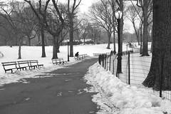 XT1-02-22-15-110 (a.cadore) Tags: nyc newyorkcity blackandwhite bw landscape pentax centralpark candid 28mm uptown fujifilm hff xt1 smcpm28mmf28 pentaxmsmc28mmf28 fujifilmxt1