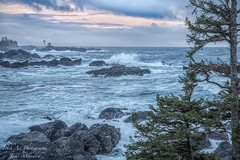 Last light of a stormy day on the Pacific Ocean - Ucluelet, BC (Freshairphotography) Tags: light evening rocks view stormy vancouverisland pacificocean hank westcoast ucluelet rocksandwater stormyseas wildseas blackrockresort iloveucluelet