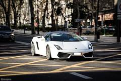 Lamborghini Gallardo Spyder LP560-4 (Djimagem Cars Photography) Tags: spyder lamborghini gallardo whitebull lp5604