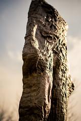 Hard Life (rg69olds) Tags: statue museum canon 50mm nebraska sigma omaha outing oldmarket joslyn 6d canondigitalcamera hardlife sigma50mmf14exdghsm 03062016