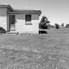 Abandoned house (Seriously People) Tags: newzealand 120 6x6 film analog mediumformat neopan analogue ilford baringhead fujiacros shootfilm filmisnotdead hasselblad503cx ilfoteclc29 filmcommunity 60mmcf afracturedmind jonobissex