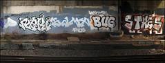 Cartel / Nervo / Sample / Bugof / Stres (Alex Ellison) Tags: urban bug graffiti boobs railway chrome sample nerv graff cartel tgs trackside samp northwestlondon stres nervo bugof
