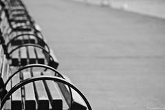 Take a seat (winestains) Tags: ontario port waterfront niagara stcatharines portdalhousie