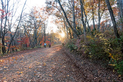 NarukoOnsen-65 (clouddra) Tags: autumn japan jp miyagiken narukogorge narukoonsen sakishi