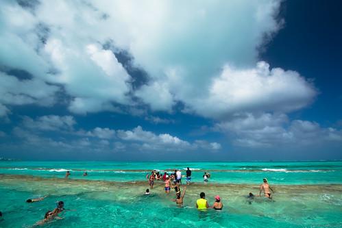 Isla Acuario