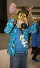 _DSC8396 (Acrufox) Tags: midwest furfest 2015 furry convention december hyatt regency ohare rosemont chicago illinois acrufox fursuit fursuiting mff2015