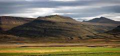 eastcoast  mountains 1 (Bilderschreiber) Tags: two horse mountains island iceland berge ponies eastcoast ostkste