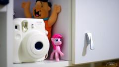 Litle pony... (mauroheinrich) Tags: brasil 50mm nikon 14 pony fotografia nikkor nikondigital riograndedosul imagem d610 camre ponei nikonians ibirub nikonprofessional nikonword mauroheinrich