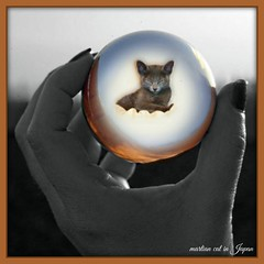 """""""There's no need for a piece of sculpture in a home that has a cat."""" (martian cat) Tags: pet macro glass cat kitty onwhite allrightsreserved russianblue megumi kittycat glasssphere allrightsreserved martiancatinjapan allrightsreserved createdreflection martiancatinjapan martiancatinjapan allrightsreserved martiancatinjapan"""