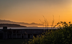 Fort Casey Sunset.jpg (Eye of G Photography) Tags: sunset usa silhouette places whidbeyisland northamerica pugetsound washingtonstate sunsetsunrise fortcasey blackberryleaves olympicmts gunimplacements