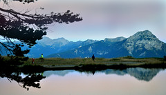 Lake in the Ecrins, France (laurahilhorst) Tags: sunset sky lake france mountains reflection tree green beautiful animals swimming walking hiking lakes bluesky hills redsky pinksky mountainlake bluelake lovenature ecrins