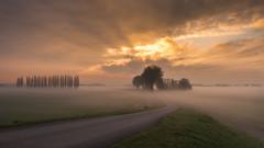 sunrise trail (Jaco-Costerus) Tags: fog sunrise zonsopkomst grondmist nikon1635mmf4 gemeenteneerijnen nikcollection zonsopkomstmist sunrisegroundfog