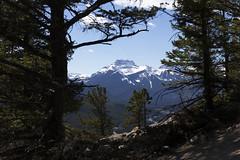 Banff, Tunnel Mountain Hike, April 9 2016 (60)_e_apr_11_16 (Velates) Tags: canada mountains alberta rockymountains banffnationalpark