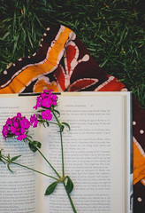 179A0730-1 (den_ise11) Tags: pink flowers white plant flower nature grass reading book spring weeds weed purple pages outdoor books literature blow read wish hindu tapestry openbook