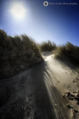 Beach Bamburgh, Northumberland (Silent Eagle  Photography) Tags: blue sea plants sun seascape beach beautiful canon photography yahoo google shadows silent eagle wind outdoor northumberland sep northeast bamburgh constrast canoneos5dmarkiii silenteaglephotography silenteagle09