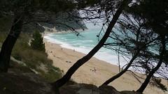 #sassineri #ancona #sirolo #marche #italy #landscape #sea (antocalv) Tags: sea italy landscape marche ancona sirolo sassineri