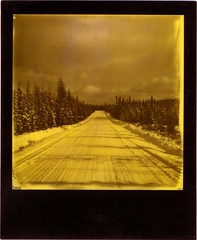 one more silver dollar (R. Drozda) Tags: road sky cloud snow tree film alaska polaroid sx70 spring fairbanks borealforest instantfilm duochrome drozda impossibleproject thirdmanrecords yellow600duochrome roidweek2016spring