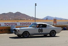 Shelby (SoCal Brian's Page) Tags: racing cocoa fords