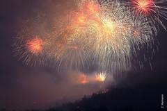 Feuerwerk (welenna) Tags: fest feuerwerk