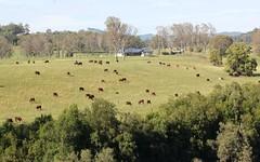 361 Gloucester Road, Burrell Creek NSW