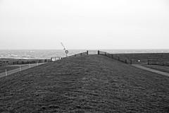 at the dike - am Deich (okrakaro) Tags: ocean white black netherlands monochrome weather terschelling island meer stormy insel northsea weiss schwarz januar niederlande 2016 amdeich strmischeswetter atthedike