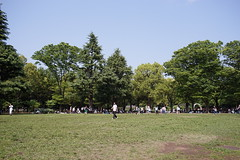 DSC00200 (koyaman3422) Tags: nikon sony 28mm harajuku